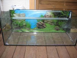 Foto 3 Profi Aquarium Komplettset zum Einsteigerpreis