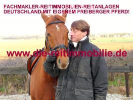 Fachmakler Reitanlagen Deutschland mit seinem Pferd.