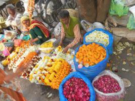Foto 3 Reise nach Indien