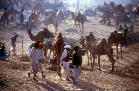 Foto 6 Reise nach Indien