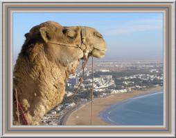 Reisen nach Marokko