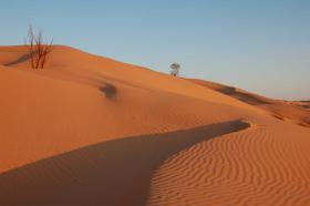 Foto 4 Reisepartner für Sahara Trekking, Tunesien