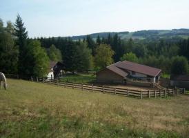 Foto 5 Reitanwesen am Bayerischen Wald in Alleinlage nähe Straubing