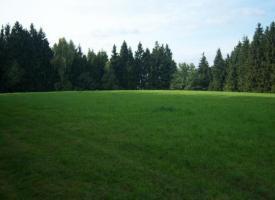 Foto 6 Reitanwesen am Bayerischen Wald in Alleinlage nähe Straubing