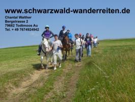 Foto 3 Reiten, Reitferien, Schwarzwald-Wanderreiten Todtmoos Au