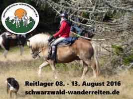 Foto 4 Reiten - Wanderreiten für Erwachsene Todtmoos Au Südschwarzwald