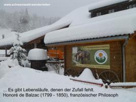 Foto 5 Reiten - Wanderreiten für Erwachsene Todtmoos Au Südschwarzwald