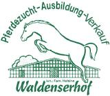 Reiterferien auf dem Waldenserhof in Hessen