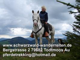 Foto 7 Reitferien im Naturpark Südschwarzwald Todtmoos Au