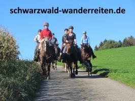 Foto 11 Reitferien im Naturpark Südschwarzwald Todtmoos Au