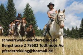 Foto 2 Reitferien, Wanderreiten, Coaching in Todtmoos Au