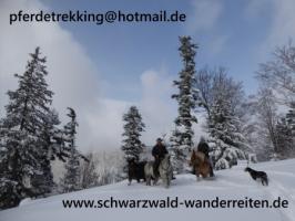 Foto 8 Reitferien, Wanderreiten, Entschleunigen im Schwarzwald Todtmoos Au
