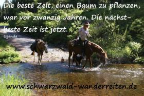 Foto 3 Reitferien, Wanderreiten, Entschleunigen im Schwarzwald Todtmoos Au