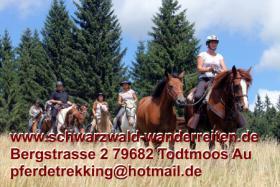 Foto 4 Reitferien, Wanderreiten, Pferdetrekking Todtmoos Au