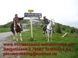 Foto 2 Reitferien, Wanderreiten, Urlaub im Sattel, Pferdetrekking ab Todtmoos Au