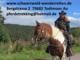 Reitferien, schwarzwald-wanderreiten, Reiturlaub in Todtmoos Au