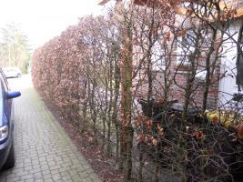 kostenlose kleinanzeigen sie sucht ihn Papenburg