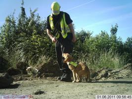 Foto 2 S R S    VISITOR DOG  SQUAD - Kinder- Heim  Besuchshunde Dienst