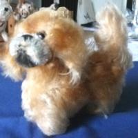 STEIFF: Kleiner Hund ''Peky'', ohne ID's