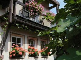 Foto 3 SÜDLICHE WEINSTRASSE   -   Ferienappartement -Tel. 06323 / 6721