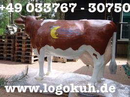 Foto 3 Schatzy glaubst Du net das Wir auch ne Deko Kuh kaufen sollten ...