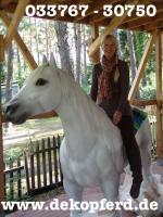 Foto 4 Schatzy glaubst Du net das Wir auch ne Deko Kuh kaufen sollten ...