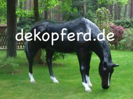 Schenken Sie zum Geb. eine Deko Kuh und ein Deko Pferd als Gastgeschenk  ...