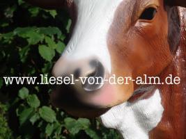 Foto 4 Schenken Sie Ihrer Mutti eine Deko Kuh zu weihnachten… 1049,00 € kostet bei uns diese Deko Kuh lebensgross mit der Kuhschelle und Kuhschellenriemen inkl. Lieferung / DE