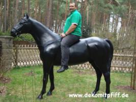 Schenken sie doch mal ein Deko Pferd Ihren gatten … www.dekomitpfiff.de