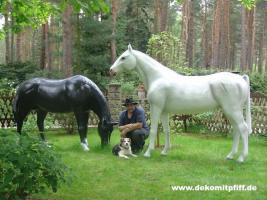 Foto 2 Schenken sie doch mal ein Deko Pferd Ihren gatten … www.dekomitpfiff.de