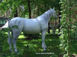 Foto 4 Schenken sie doch mal ein Deko Pferd Ihren gatten … www.dekomitpfiff.de