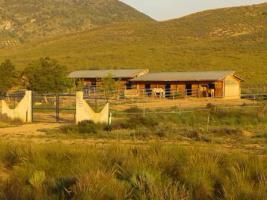 Foto 5 *Schnäppchen* 2 Häuser und Pferderanch auf 138000 qm Grundstück günstig zu verkaufen!