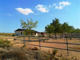Foto 7 *Schnäppchen* 2 Häuser und Pferderanch auf 138000 qm Grundstück günstig zu verkaufen!