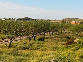 Foto 9 *Schnäppchen* 2 Häuser und Pferderanch auf 138000 qm Grundstück günstig zu verkaufen!