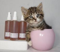 Schön, dass Sie auch Katzenliebhaber sind! Baron's Katzen-DEO
