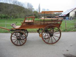 Schöner ungarischer Jagdwagen