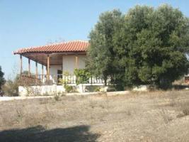 Foto 4 Schoenes Landhaus auf Halkidiki/Griechenland