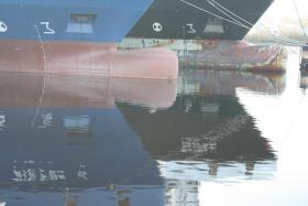 Schutz des schwarzen Seehechtes vor Fischereipiraten  Sea Security Force Association