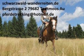 Schwarzwald-Wanderreiten, Reitferien in Todtmoos Au