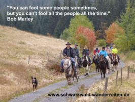 Foto 13 Schwarzwald-Wanderreiten, Reitferien in Todtmoos Au
