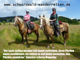 Foto 16 Schwarzwald-Wanderreiten, Reitferien in Todtmoos Au