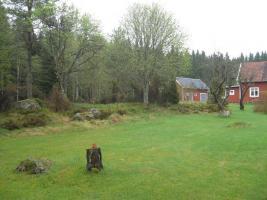schweden haus im wald zu verkaufen einfamilienhaus