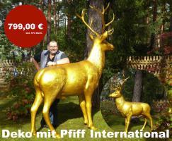 Foto 3 Schweiz / COW  DECO UND WILLSTE ???