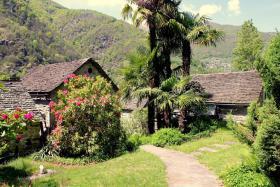 Foto 8 Schweiz - Tessin - FeWo - rustikales Ferienhaus