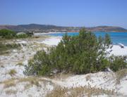 Foto 6 Segeln in Sardinien zu den schönsten Sandstränden Europas