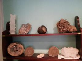 Foto 2 Seltene Fossilien und Mineralien