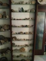 Foto 4 Seltene Fossilien und Mineralien