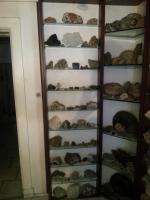 Foto 5 Seltene Fossilien und Mineralien