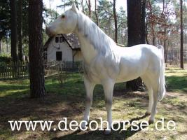 Foto 2 Sie möchten eine Deko Kuh oder doch ein Deko Pferd oder vielicht eine ganz unverbindliche Beratung vor dem Kauf ?