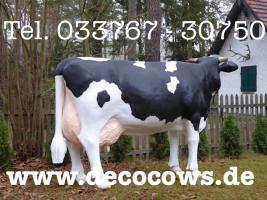 Foto 3 Sie möchten eine Deko Kuh oder doch ein Deko Pferd oder vielicht eine ganz unverbindliche Beratung vor dem Kauf ?